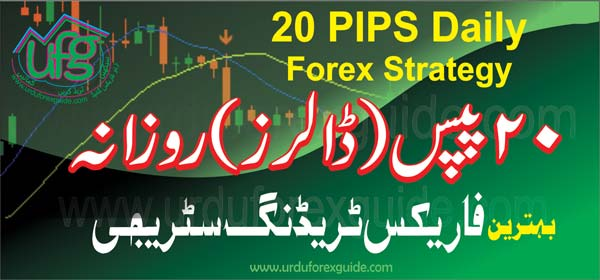 Forex daily pips
