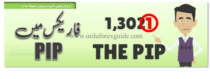 header-what is pip in forex urdu