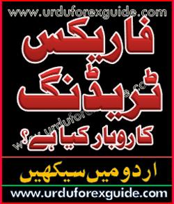 Forex urdu forum
